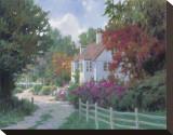 Country Lane Reproducción de lámina sobre lienzo por Allan Myndzak