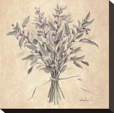 Scent of Sage キャンバスプリント : テランダー