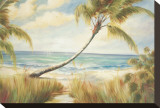 Shoreline Palms I Stretched Canvas Print by Marc Lucien
