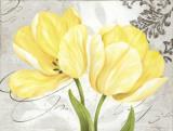 Colori Yellow II Poster par Pamela Gladding