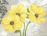 Colori Yellow I Prints by Pamela Gladding