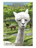 America's Stonehenge, New Hampshire - Alpacas Plakater af  Lantern Press