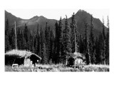 Alaska - View of Trapper's Cabin and Cache Poster von  Lantern Press