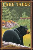 Bear in Forest - Lake Tahoe, California Posters par  Lantern Press