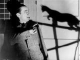 Le Chat Noir, 1934 Impressão fotográfica