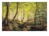 A Forest Glade Giclee Print by Johannes Boesen