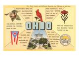 Ohio's Flag, Bird, Capitol, etc. Art