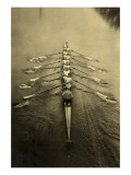 Rowing Crew Poster