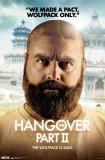 Hangover 2 - Alan Posters