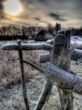 Skidoo Lámina fotográfica por Jim Crotty