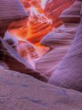 Agiloo Lámina fotográfica por Jim Crotty