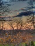 Devzone Lámina fotográfica por Jim Crotty