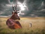 Oonder Lámina fotográfica por Lynne Davies