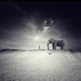Lauf mit mir Fotografie-Druck von Luis Beltran
