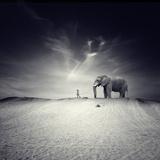 Volg mij Premium fotoprint van Luis Beltran