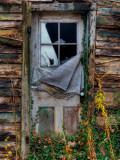 Ozz Lámina fotográfica por Jim Crotty