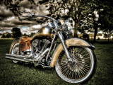 Harley Photographic Print by Stephen Arens
