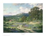 Hill Country Evening Prints by Larry Dyke