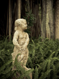 USA, Florida, Sarasota, Ringling Museum, Outdoor Sculpture Garden Photographic Print by Walter Bibikow