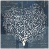 Document Sea Fern I Prints by  Z Studio