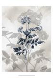 Indigo Bloom II Kunst af John Butler