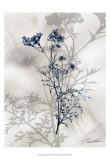 Indigo Bloom I Posters af John Butler