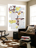 Travelers Map Of Spain And Portugal Map 1984 Side 2 Wall Mural by  National Geographic Maps
