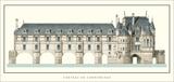 Chateau de Chenonceau, Loire Posters by Philibert Delorme