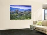 Colombia, Caldas, Manizales, Chinchina, Coffee Plantation at Hacienda De Guayabal at Dawn Bildtapet av Jane Sweeney