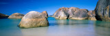 Rock Formations on the Coast, Elephant Rocks, William Bay National Park Fotografisk trykk