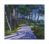 Avenue of Pines Collectable Print by Davy Brown