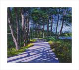 Avenue of Pines Samlarprint av Davy Brown