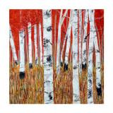 Rot und Gold Sammlerdrucke von Sandra Moffat