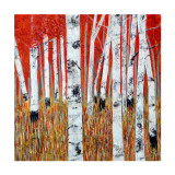 Red and Gold Collectable Print by Sandra Moffat