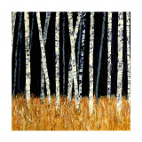 Black and Gold Collectable Print by Sandra Moffat