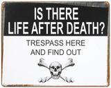 Life After Death Plaque en métal
