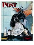 """""""Butch's Haircut,"""" Saturday Evening Post Cover, January 31, 1948 Reproduction procédé giclée par Albert Staehle"""