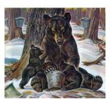 """""""Bears Eating Maple Syrup,"""" March 28, 1942 Lámina giclée por Paul Bransom"""