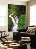 Sol Duc Falls in Olympic National Park, Washington, USA Wall Mural by Chuck Haney