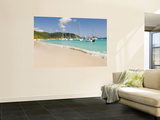 Popular Moorings For Bareboaters and Charter Sail, White Bay, Jost Van Dyke, Bvi Wall Mural by Trish Drury