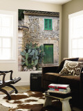 Opuntia Cactus and Green Door Wall Mural by Holger Leue