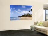 View of Luquillo Beach, Puerto Rico, Caribbean Bildtapet av Dennis Flaherty