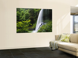 Middle North Falls, Silver Falls State Park, Oregon, USA Fototapete von Adam Jones
