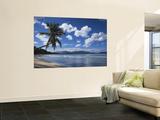 Playa Rincon Beach, Las Galeras, Samana Peninsula, Dominican Republic Fototapete von Walter Bibikow