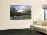 Road Bicycling on the Icefields Parkway, Banff National Park, Alberta, Canada Carta da parati decorativa di Chuck Haney