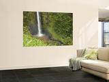 Akaka Falls, Hamakua Coast, Hawaii, USA Fototapete von Savanah Stewart