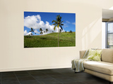 Sugar Cane Fields Baie Du Cap Wall Mural by Oliver Strewe