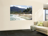 Waves Roll onto Palm Lined Beach Wall Mural by Dan Gair
