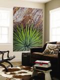 Yucca and Stone Veggmaleri av Douglas Steakley