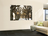 Man on Path in Park in Winter Wall Mural by Richard l'Anson